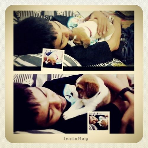 I miss you both :) Welcome Bonie Puppy Dog bf picoftheday