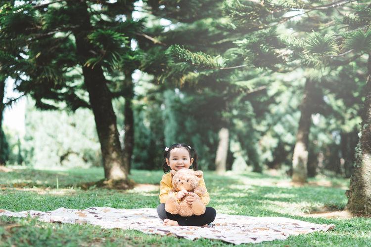 Portrait of a boy sitting on tree