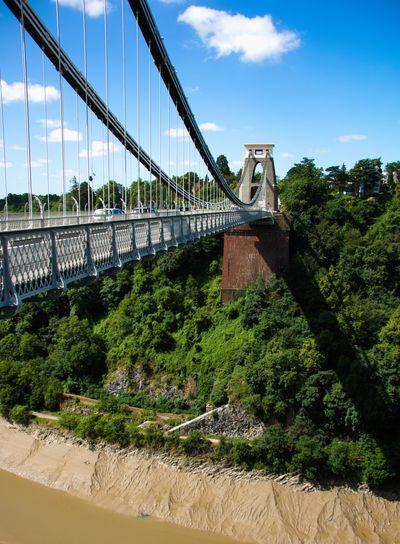 Built Structure Architecture Tree Plant Sky Bridge Nature