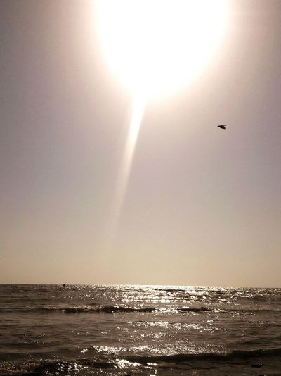 Sunset Seaside Nikongirl Sunrays