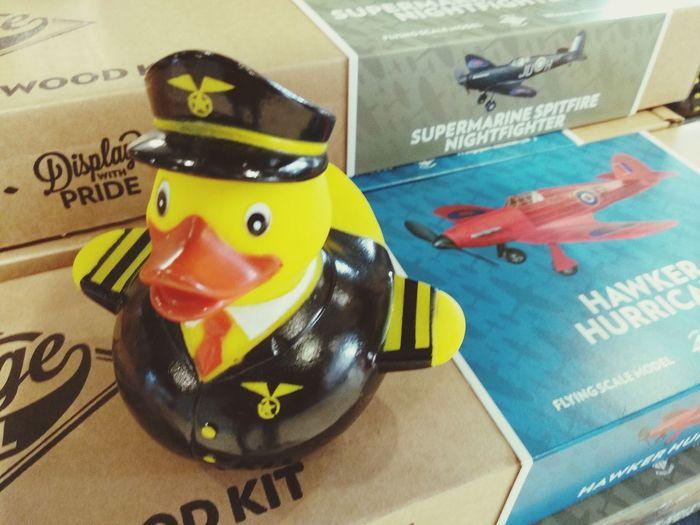 Flight captain Rubber Duck