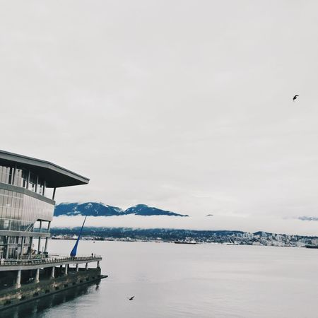Water Sea Nature Tranquility Beauty In Nature Outdoors Sky Day No People Scenics Harbor VSCO Cam Vancouver BC Downtown Vancouver Lightroom Mobile Yvr