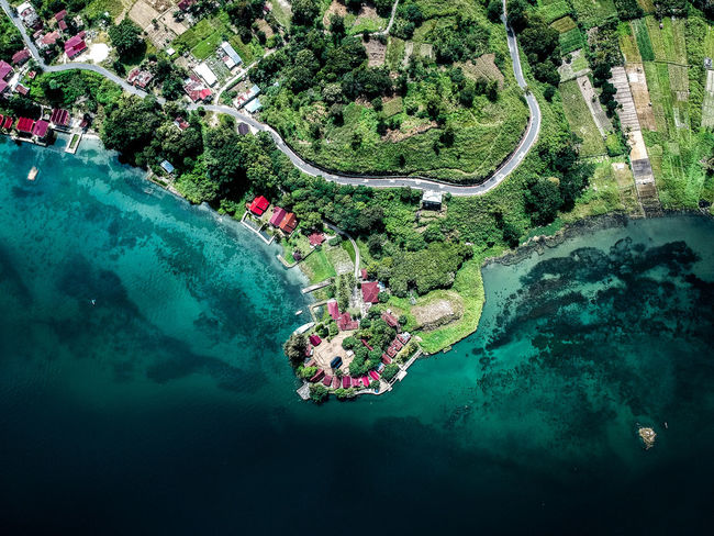 samosir from above Drone  Dronephotography Sumatra  Samosir Island  Dji Lake 400m  Tree Water Aerial View Flower High Angle View Backgrounds Plant Shore EyeEmNewHere