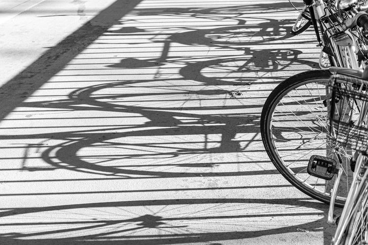 Shadow of bicycle on footpath