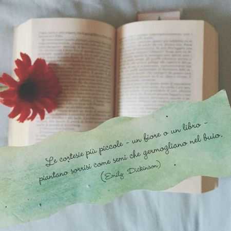 Books Flower Quote Emily Dickenson