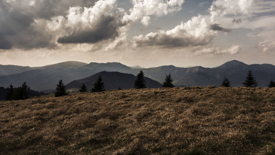 landscape Slovakia Velka Fatra Beauty In Nature Cloud - Sky Day Environment Field Grass Growth Land Landscape Mountain Mountain Range Nature No People Non-urban Scene Outdoors Plant Scenics - Nature Sky Tranquil Scene Tranquility Tree