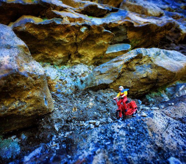 Traveling Motorcycle Rocks Offroad Macro Macro Photography Macro Nature EyeEm Nature Lover Eye4photography  IPhoneography