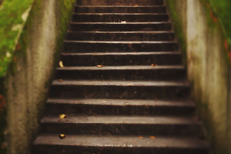 The autumn staircase Staircase No People Selective Focus Steps And Staircases The Way Forward Direction Architecture Outdoors Railing Moving Up Low Angle View In A Row Built Structure Pattern Nature Old Day