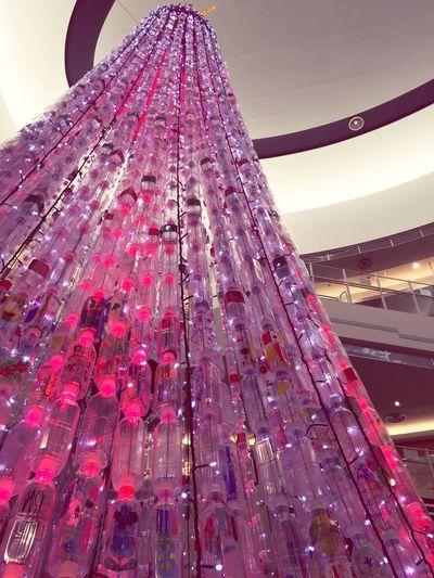 Japan Photography Japan Tree Bottle Plasticbottles