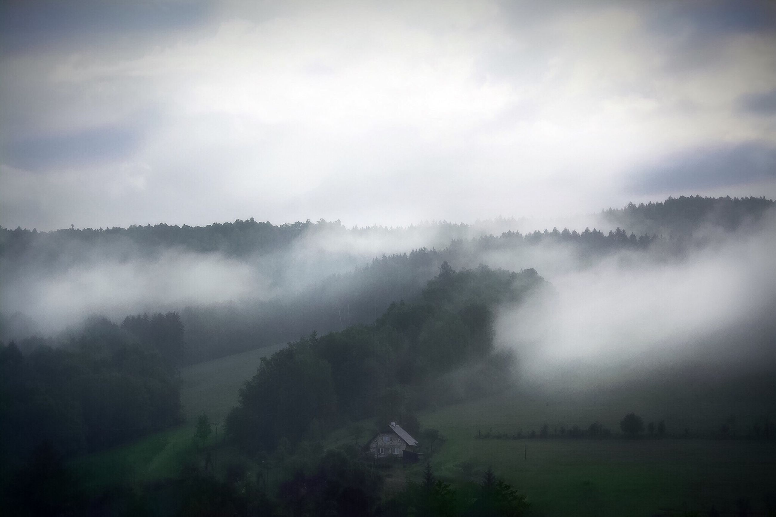 fog, foggy, tranquil scene, scenics, weather, tranquility, beauty in nature, tree, sky, nature, landscape, cloud - sky, idyllic, cloudy, growth, non-urban scene, mountain, overcast, outdoors, mist, day, no people, remote, cloud, majestic, travel destinations, green color