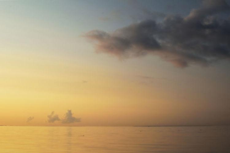 Yellow Sunrise