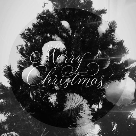 Joyeux Noël! Rêvez, partagez!
