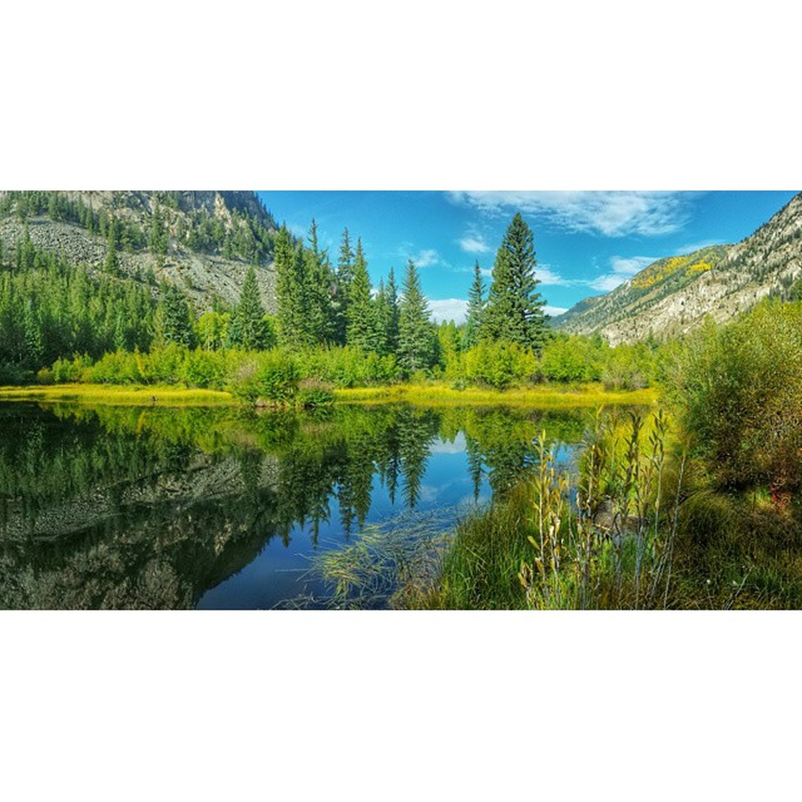 tranquil scene, tranquility, water, scenics, beauty in nature, lake, transfer print, mountain, reflection, tree, nature, sky, clear sky, landscape, auto post production filter, blue, idyllic, growth, green color, non-urban scene