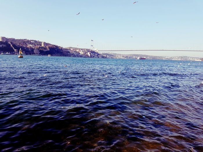 Water Sea