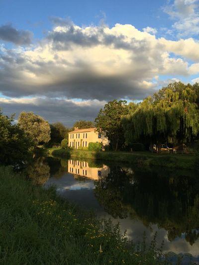 IPhoneography Reflection Veniseverte Maraispoitevin Tree EyeEm Nature Lover