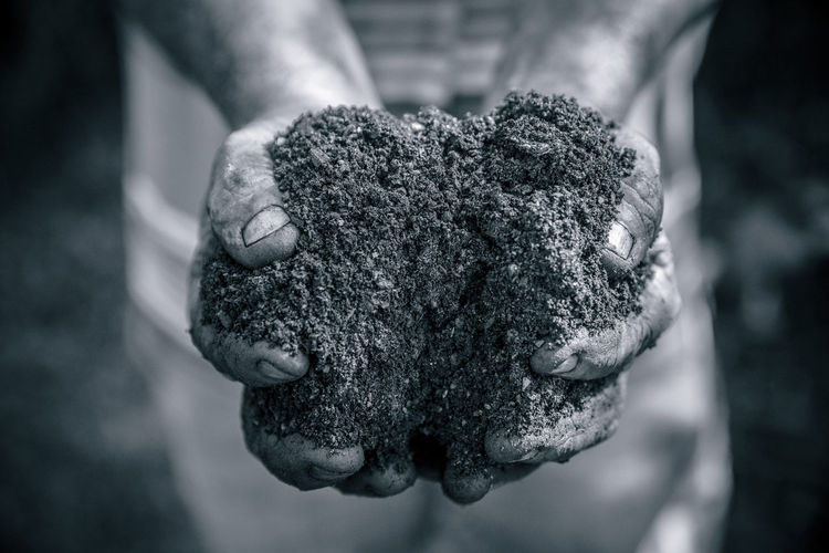 Human Body Part Human Hand One Person Close-up Hand Focus On Foreground Day Nature Holding Dirty Mud Selective Focus High Angle View Outdoors Food And Drink Real People Body Part Dirt Working Messy Finger