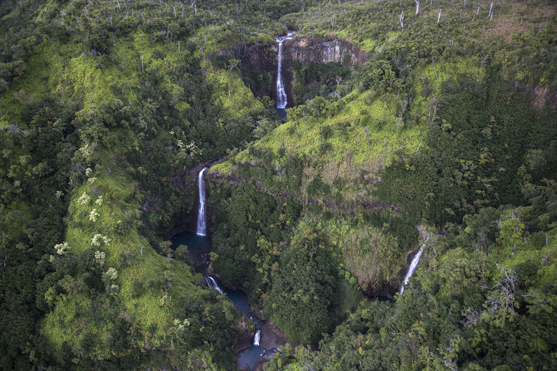 View from Helicopter at jungle with three waterfalls Hawaii Adventure Adventure Time Conservation Environmentalism Flight Flightview Helicopter View  High Quality Photography Jungle Landscape Lush Lush Green Mountains Lush Greenery Mountains And Valleys Napali River Rugged Landscape Rugged Terrain Tourism Destination View From Above Waterfall Waterfalls