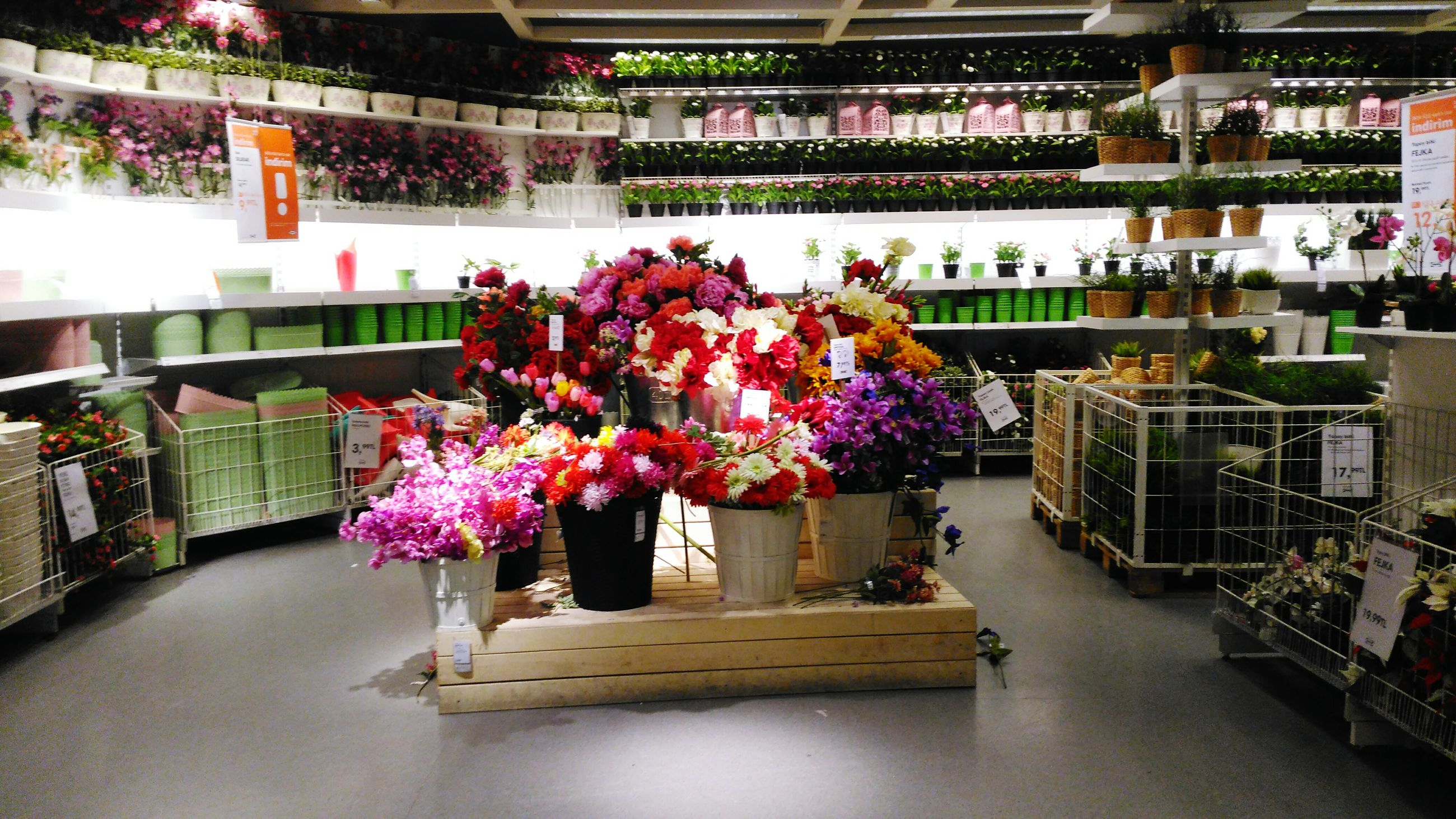 flower, for sale, variation, retail, freshness, choice, arrangement, multi colored, market stall, large group of objects, abundance, market, potted plant, hanging, built structure, table, small business, decoration, indoors, day