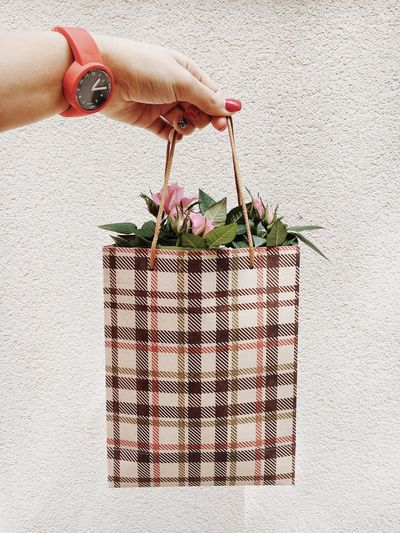 Cropped hand holding flowers in bag against wall