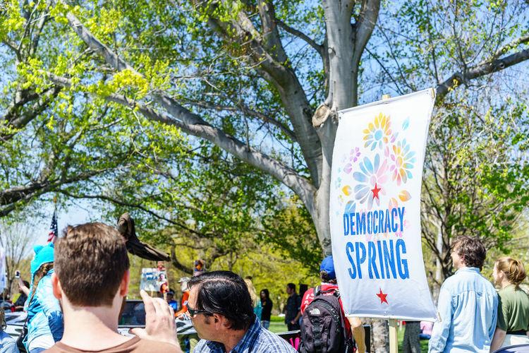 Capital Cities  Capitol Hill Democracy Spring Demonstration Fight Flower International Landmark One Person One Vote Park Peace Protest Showcase April Spring Tree Washington Washington, D. C.