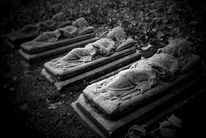 Graveyard Graveyard Beauty Notes From The Underground Untold Stories Monochrome Blackandwhite Darkness And Light Light And Shadow Eye4black&white  Fortheloveofblackandwhite