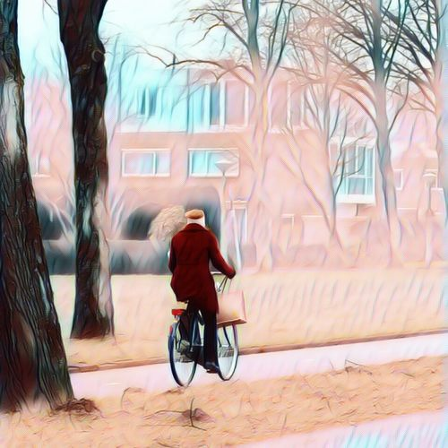 One Person Full Length Outdoors Wheelchair Differing Abilities Adults Only Physical Impairment People Adult Real People Building Exterior Men One Man Only Tree Baby Stroller Only Men Day Wheelchair Access