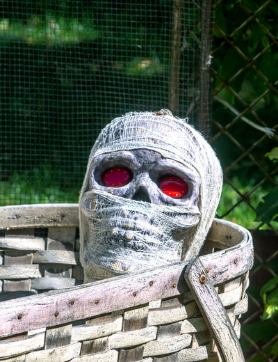 Wrapped mummy with glowing eyes lies in a large basket