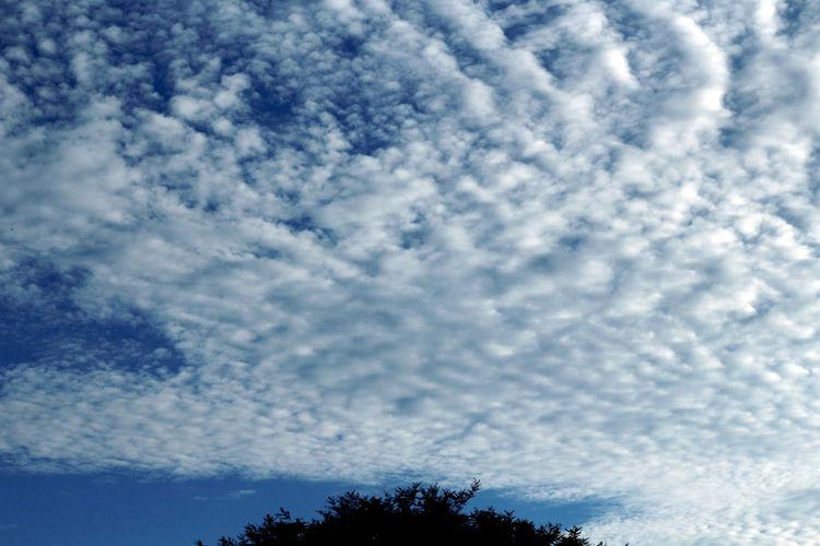 Clouds in blue