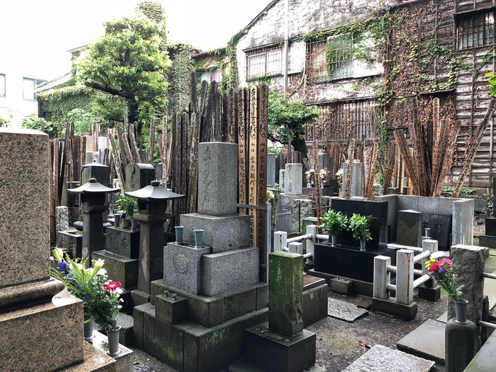 Japanese cemetery Cemetery Grave Tombstone Memorial Spirituality Sadness Religion Japanese Culture