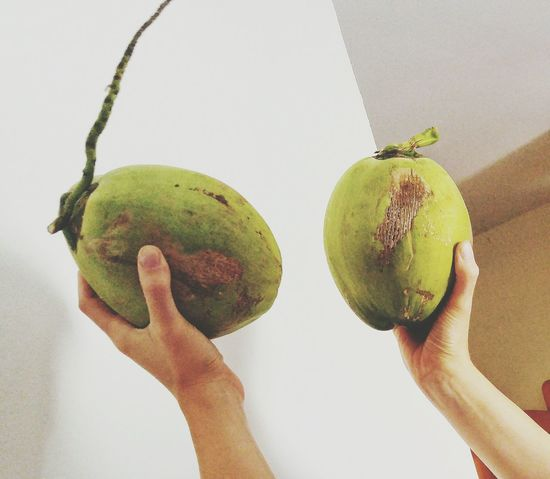 Fresh Young Coconut Coco Green Coconut Thailand Nature