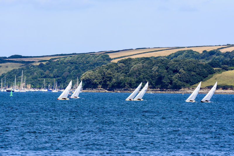 Scenes from Falmouth Week in Falmouth, Cornwall, UK Boats Boats⛵️ Cornwall Cornwall Uk Falmouth Leisure Activity Nautical Nautical Vessel Regatta Sailboat Sailing Seascape