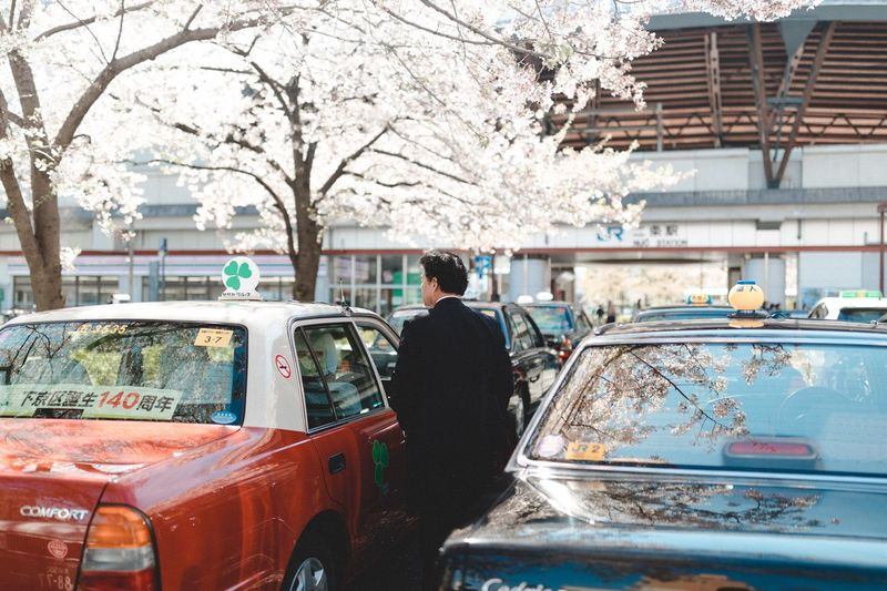 Transportation Car Mode Of Transportation Motor Vehicle Land Vehicle Tree Real People One Person Day Architecture Rear View Plant Nature Men Built Structure Lifestyles Building Exterior Outdoors Standing Cherry Blossom