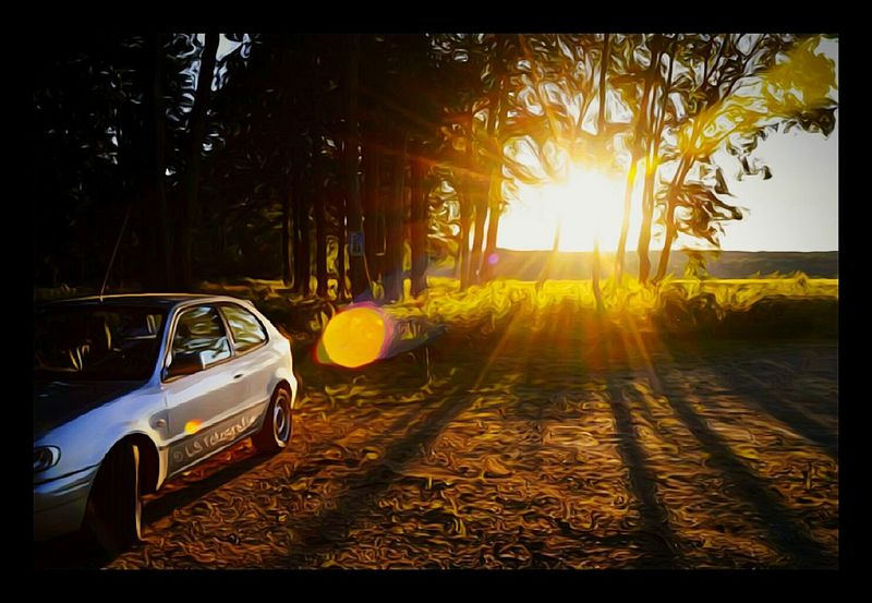 Tree Sunlight Lens Flare Transportation Sunset Nature No People Outdoors Scenics Beauty In Nature Sun Focus On Foreground EyeEm Master Class The Week On EyeEem Pursuit Of Happiness Happiness Full Length Close-up Seriously Beautiful Razzle Dazzle Telling Stories Differtenly Streamzoofamily Come Out And Play Inspiration Delights Of Life