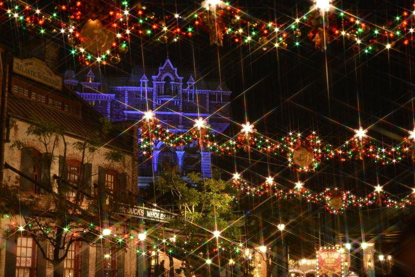 東京ディズニーシー Tokyo Disney Land Christmas Christmas Lights