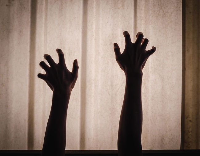 Silhouette Man Hand Against Blurred Background