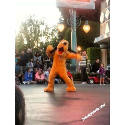 Pluto!! Disneycalifornia Disneylandresort Disneyland Disneyland_cali