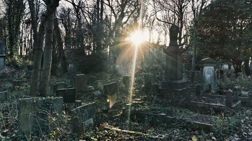 And then you go ... *** ... Cemetery_shots Memories Dark Sun Sunshine Sunlight Cemetery Abandoned Places Decay Graveyard Vscocam Grave Derelict Graveyard Collection VSCO Gothic Samsung Galaxy S4 Samsungphotography Abandoned фотография Cemetery Photography Graveyard Beauty Amour Vscogrid Abandonedplaces
