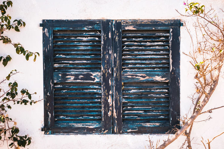 Architecture Built Structure Building Exterior Window Building Plant Closed Day No People Safety Security Protection House Entrance Wall - Building Feature Door Nature Wood - Material Old Metal Outdoors Deterioration Iron Window Frame Whitewall