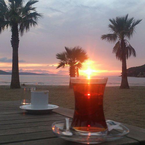 Enjoyingmyholiday Egesea Eco чаю хотите?))