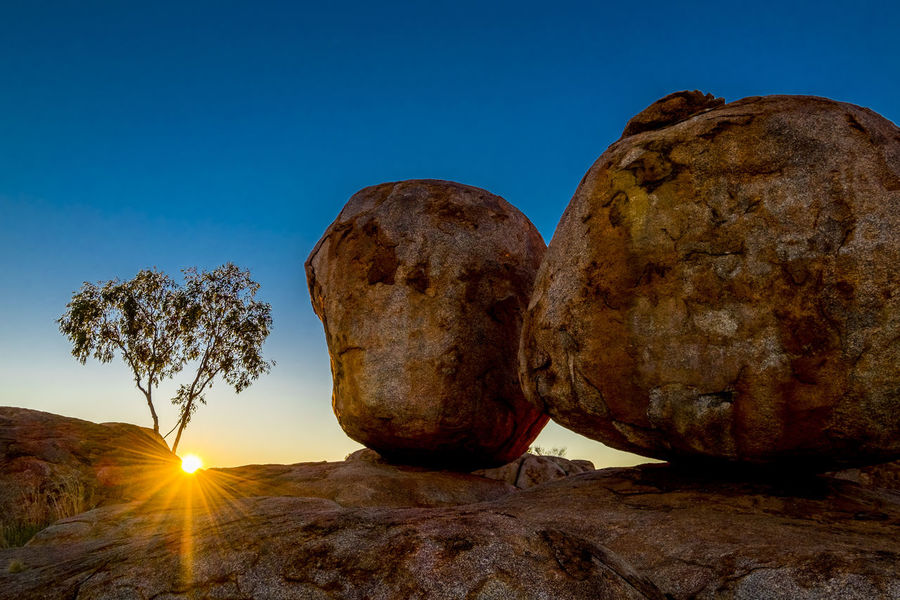 Devils Marbles Australia Australia Australian Landscape Desert Northern Territory Tree Clear Sky Day Nature No People Outdoors Rock - Object Rocks Sand Sky Sunrise Tranquility