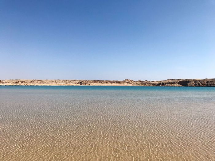 The magic lake in Ras Mohammed national park South Sinai Ras Mohammed National Park Sharm El-Sheikh Egypt Lake Sky Copy Space Clear Sky Water Nature No People Day Tranquil Scene Land Tranquility Beach Sand Waterfront Beauty In Nature Blue Outdoors The Traveler - 2019 EyeEm Awards