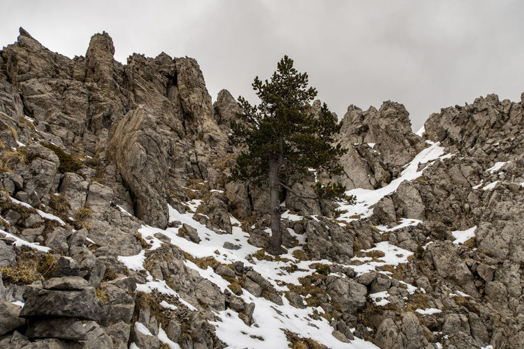 Low angle view of snow on rock against sky