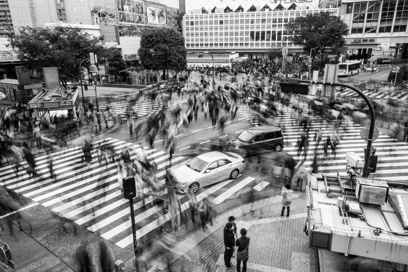 Crossing Architecture Battle Of The Cities Blackandwhite Building Exterior Built Structure City City Life City Street Crowd Day Elevated View High Angle View Journey Land Vehicle Large Group Of People Motion Blur Outdoors People And Places Rush Hour Street Town Square Travel Destinations Tree Unrecognizable Person Walking