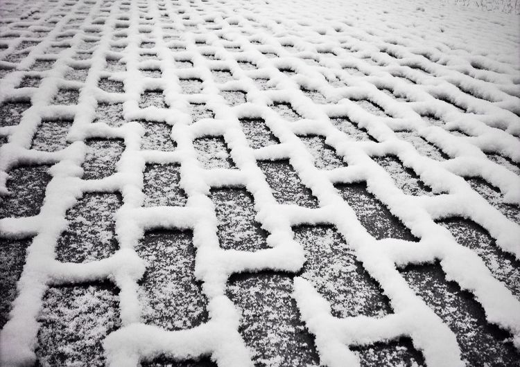 Frozen pattern. Streetphoto_bw Blackandwhite Winter White By CanvasPop AMPt_community