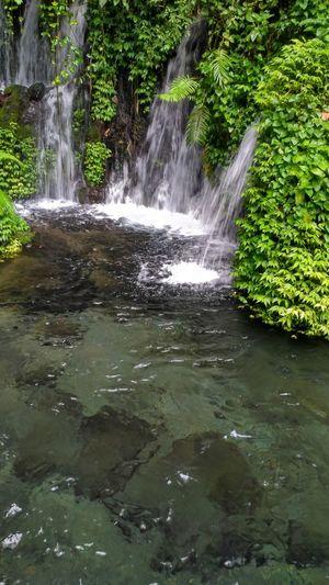 Water Nature Waterfall