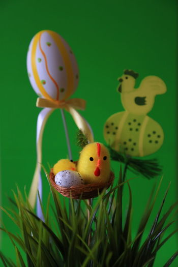 Isolated Easter Deco series The Purist (no Edit, No Filter) Raw Raw Photography Noedit Raw Image Nofilter Stock Photography Stock Image Grass Springtime Easter Egg WielkanocGreen Color Easter Green Color Springhassprung Green Background Easter Decoration Colored Background Selective Focus PlantDecoration Indoors  Art And Craft