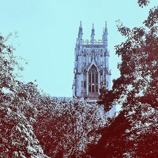 View of York Minster from the city walls York minsterCathedral From  york city wallsSunny dayuksummer