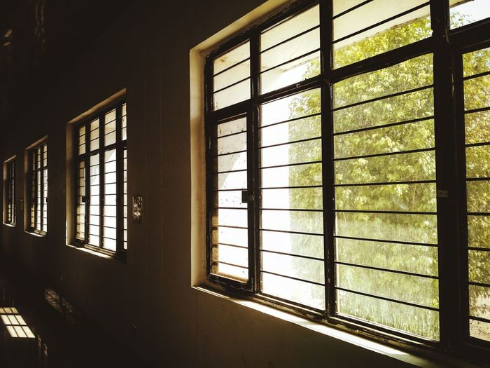 Sunlight streaming through window in house