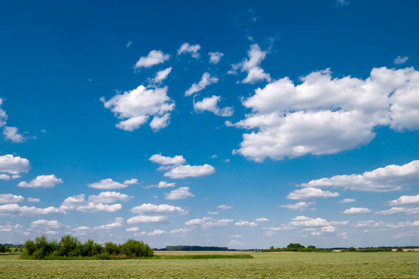 Clear Sky Country Living High Himmel Und Wolken White Clouds Air Beauty In Nature Blue Cloud - Sky Day Environment Fresh Frisch Nature No People Outdoors Oxygen Scenics - Nature Sky To Breathe Tranquil Scene Tranquility Wadding Width Summer Road Tripping