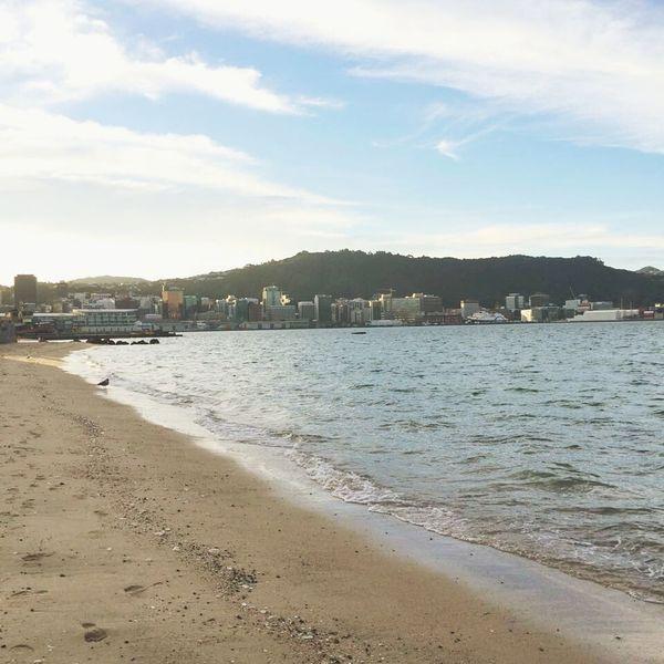Oriental Bay Wellington  New Zealand New Zealand Scenery Beach City City Escape Run Away